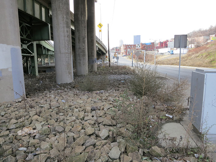 Space for a Bike Path along Forbes Avenue
